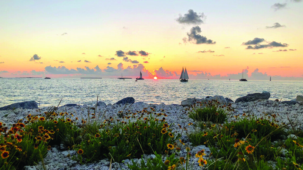 florida-road-trip-ideas-fort-zachary-taylor