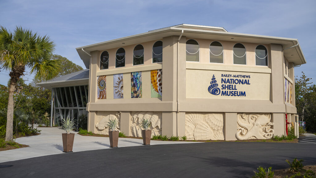 florida-road-trip-ideas-national-shell-museum