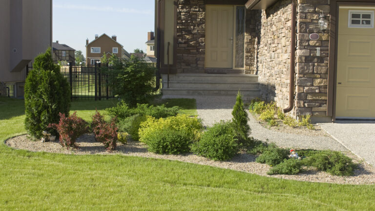 curb-appeal-tame-the-land