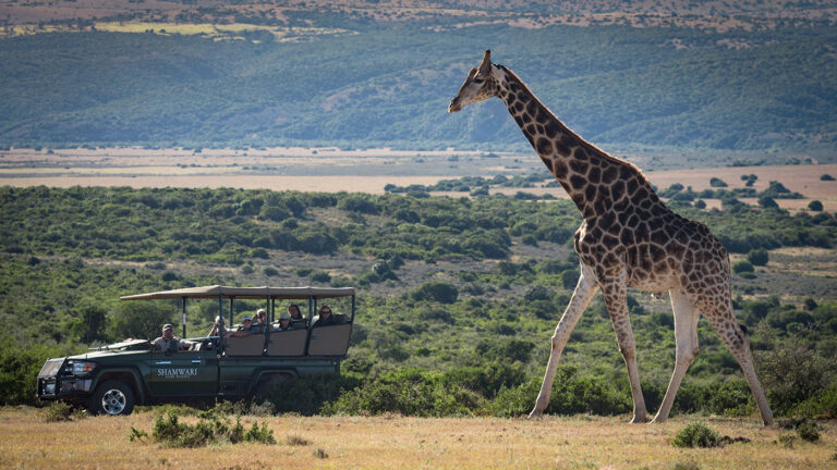 match-your-luxury-travel-style-africa
